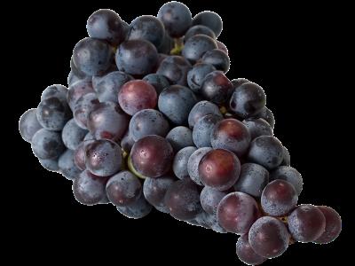 Grapes 400×300